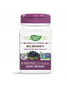Черна боровинка & Бъз 200 mg Nature's Way - 1