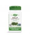 Келп (кафяви водорасли) 600 mg x 100 капс. Nature's Way - 1