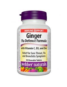 Ginger Flu Defence Formula  / Джинджифил Анти-Грип Формула Webber - 1