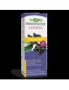 Самбукус Immune сироп 240 ml Nature's Way - 1