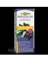 Самбукус Immune сироп 120 ml Nature's Way - 1