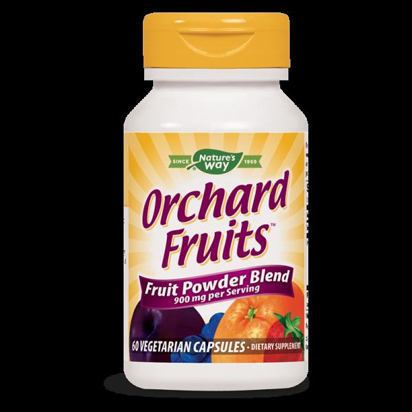 Плодов антиоксидант 450 mg х 60 капс. Nature's Way - 1