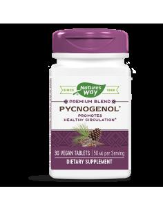 Пикногенол 50 mg Nature's Way - 1