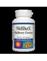 Бяла черница, 100 mg x 90 капсули Natural Factors