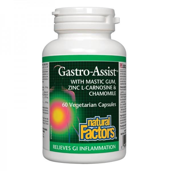 gastro-assist-mastiks-cinkov-l-karnozin-layka-60-kapsuli