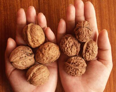 Орехи срещу стрес