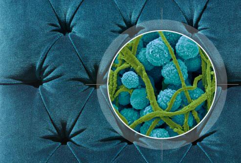 Скритите опасности от алергия у дома