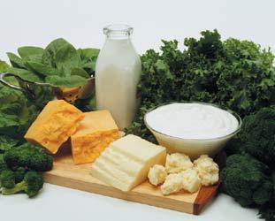 Калцият в помощ на пробиотиците