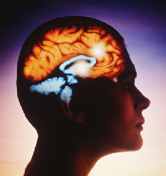 Омега-3 предпазва мозъка от стареене