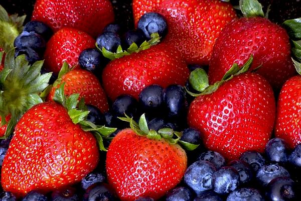 Консумацията на семчести плодове е полезна за мозъка