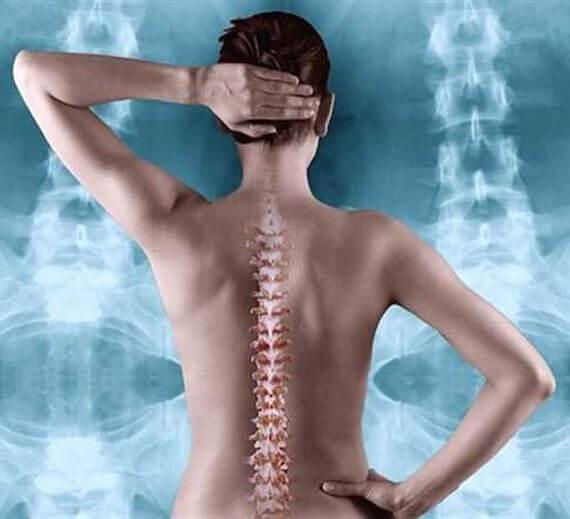 Соевите изофлавони полезни за костите