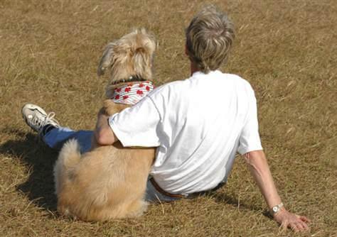 Кучето помагат срещу стрес
