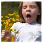 Децата в града застрашени от алергия