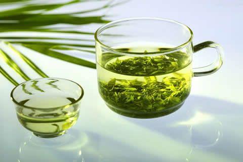 EGCG в зеления чай възпира болестта на Паркинсон