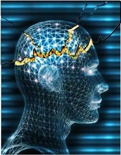 Мастните киселини помагат при епилепсия