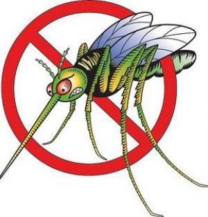 Защо ни хапят комарите