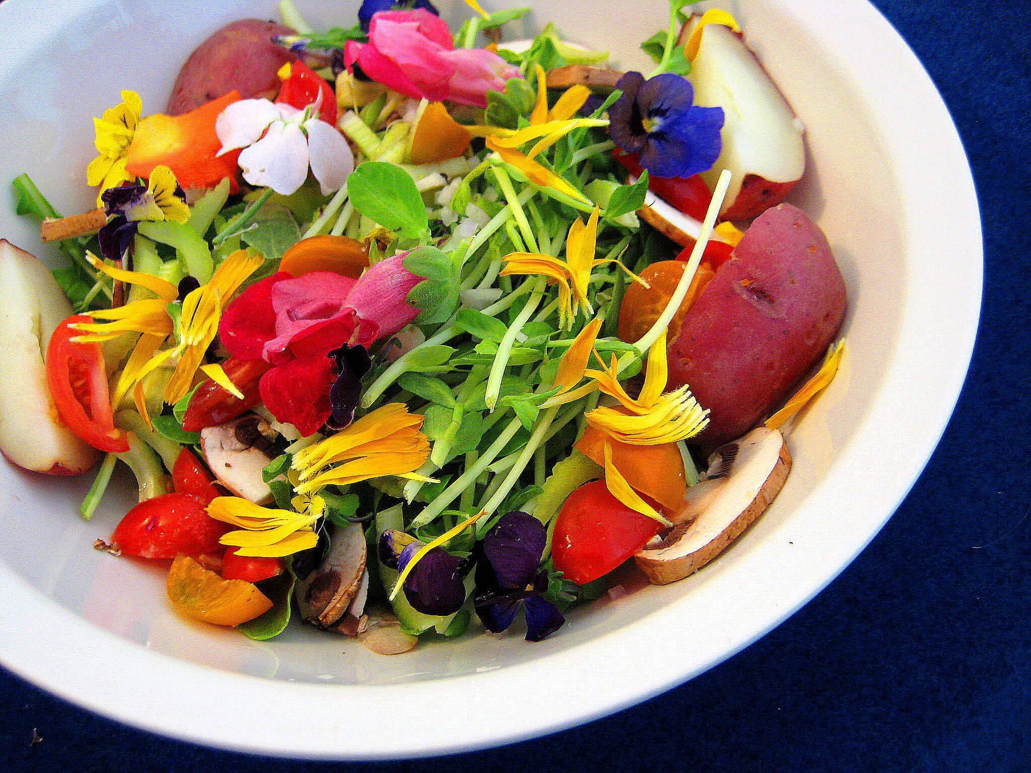 Полезни и вкусни салати през пролетта