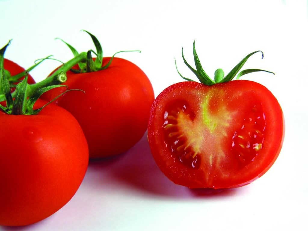 Red tomatoes on white background III