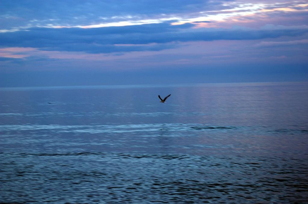 Релакс и почивка на морето