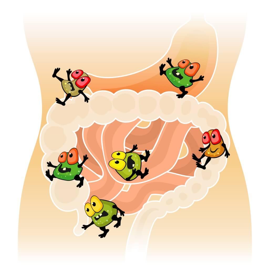 лош дъх, пробиотици