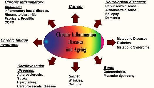 диабет, затлъстяване, омега 7