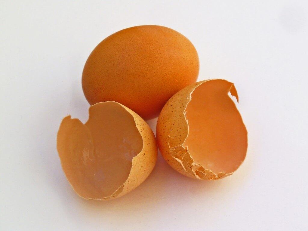 натурална яйчена мембрана