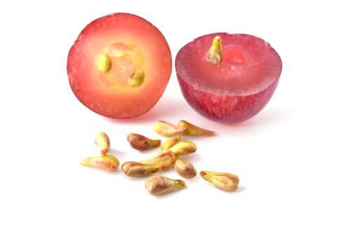 Здравни ползи от приема на екстракт от гроздово семе