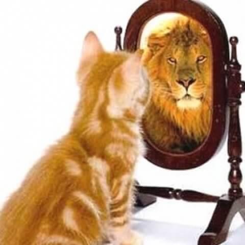 Здравословно е да притежаваме самочувствие