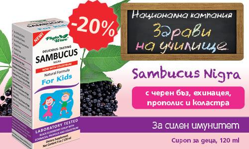 baner-sambucus-500x300-1