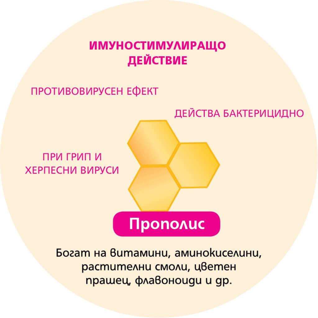 systavki-propolis