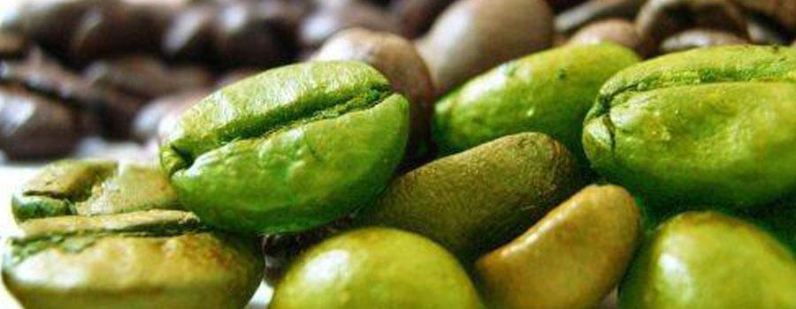 екстракт от зелено кафе