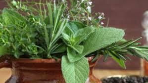 билки за щитовидната жлеза