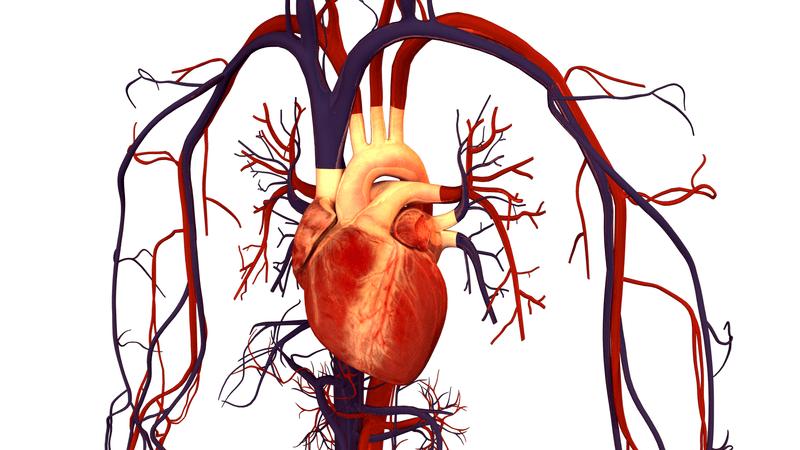 Проблеми със сърцето